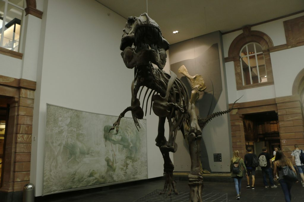 Everybody saw a T-Rex in a movie before - but did you stand in front of one before?